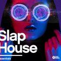 audiostorrent.xyz-Black Octopus Sound - Slap House Essentials